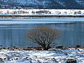 28 Risøyrenna (5658071298).jpg