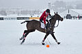 30th St. Moritz Polo World Cup on Snow - 20140202 - Cartier vs Ralph Lauren 21.jpg