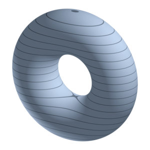 Morse theory - The torus
