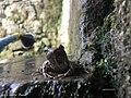 5 - Grotta di Cesare.jpg