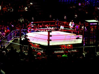 "King of the Mountain match - The TNA ring before a King of the Mountain match with the ""penalty box"" cage on the right."