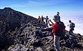 Açores 2010-07-22 (5136853487).jpg