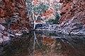 A160, West MacDonnell National Park, Australia, Serpentine Gorge, 2007.JPG