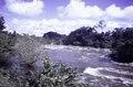 ASC Leiden - F. van der Kraaij Collection - 05 - 101 - A foamy river with rapids, bushes and trees - Liberia, 1976.tif