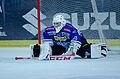 AUT, EBEL,EC RBS Salzburg vs. EC VSV (10655646046).jpg