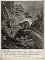 A fox with two tails on a rock in the forest. Etching by J.E Wellcome V0020987.jpg