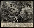 A group of hares with their young under a tree with a founta Wellcome V0021008.jpg