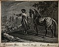 A man in a Russian attire is leading a spotted white horse a Wellcome V0021159.jpg