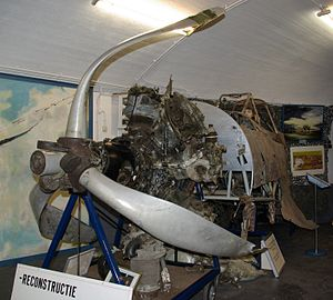 Fokker D.XXI - Preserved forward fuselage of a crashed Fokker D.XXI