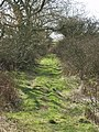 Abandoned Dons Knowe - geograph.org.uk - 370732.jpg