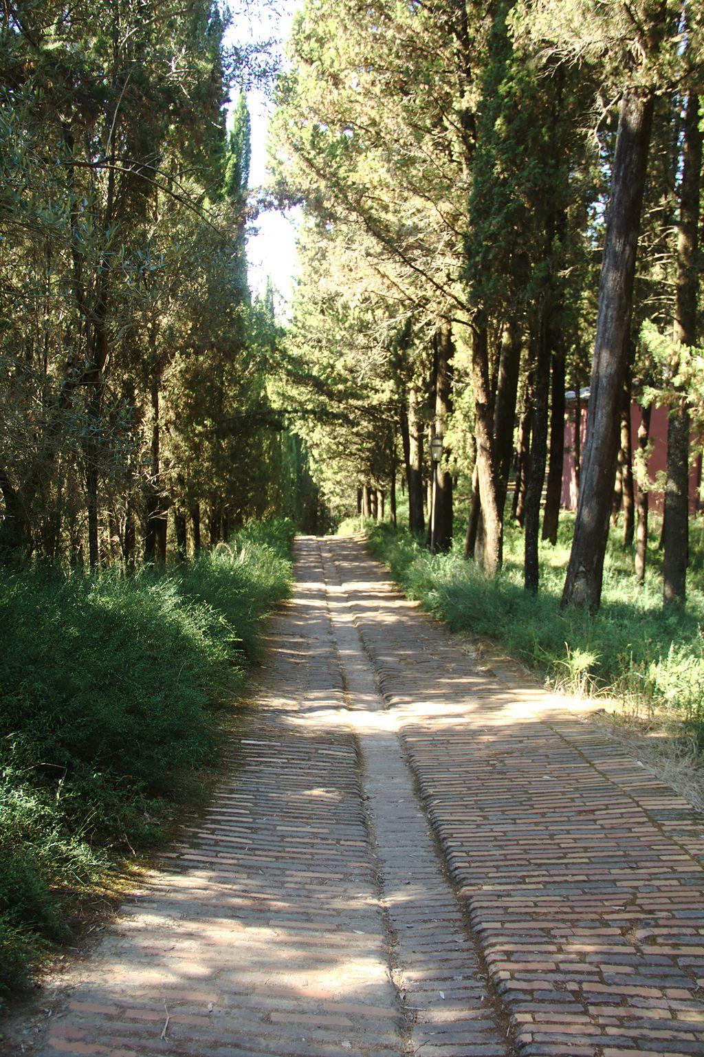 De weg naar De abdij van Monte Oliveto Maggiore