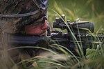 Advanced Infantry Course, Hawaii 2016 160830-M-QH615-008.jpg