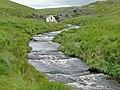 Afon Camddwr east of the Cwm Berwyn Plantation, Ceredigion - geograph.org.uk - 1416719.jpg