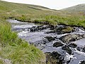 Afon Camddwr near Maesglas, Ceredigion - geograph.org.uk - 1515354.jpg