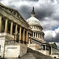 Afternoon at the Capitol. (8658704982).jpg