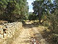 Albufeira, Country lane with dry stone wall in Enxertia (6).JPG
