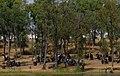 Alentejo, Portugal (35093032224).jpg