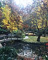 Alfred Nicholas Gardens bridge side.jpg