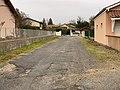 Allée Rosiers - Crottet (FR01) - 2020-12-04 - 2.jpg
