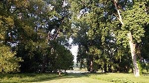 Allan H. Treman State Marine Park - Image: Allan H. Treman State Marine Park, Ithaca, New York Cottonwood Grove 1