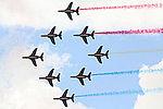 Alpha Jet Patrouille de France (3871125712).jpg