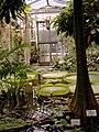 Alter Botanischer Garten der Universität Göttingen 019.jpg
