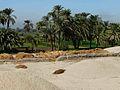 Amarna quartiernord4.jpg