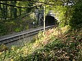Ambergate to Matlock Railway passes through tunnel near Whatstandwell - geograph.org.uk - 590841.jpg