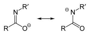 Carboximidate - Imidate/amidate resonance