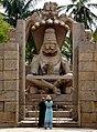 Anand bora-karnataka-DSC 7092.jpg