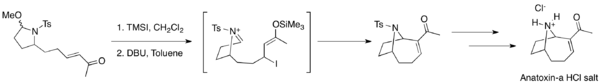 Anatoxin MBH synthesis.png