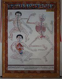Ancient Tibetan Medicine Poster.jpg