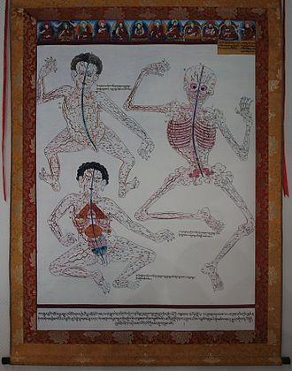 Traditional Tibetan medicine - Image: Ancient Tibetan Medicine Poster
