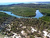 Meandering river, bordered by relatively open dry forest in the foreground, and dense mangroves in the background