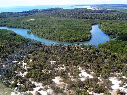 Aerial photo of the Anjajavy Forest, Madagascar which holds a number of endangered arthropods. Anjajavyforestrazorback.jpg