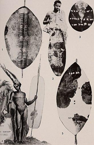 Nguni shield - Image: Annals of the South African Museum Annale van die Suid Afrikaanse Museum (1972) (17794609233)