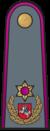 Antpetis sausumos 16 brigados generolas.png