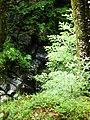 Apriltzi, Bulgaria - panoramio (50).jpg
