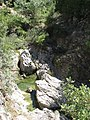 Archaggelos, Greece - panoramio (35).jpg