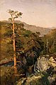 August Cappelen - Rocky Landscape with Pinetreees - Skogstudie - Nasjonalmuseet - NG.M.00289-008.jpg