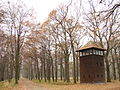 Auschwitz II-Birkenau - Death Camp - Watchtower and Woods - Oswiecim - Poland - 01.jpg