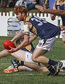 Australian rules handball.jpg