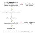 Autism diagnostic process.png