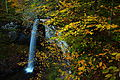 Autumn-leaves-rock-cliff-beautiful-waterfalls-wv - West Virginia - ForestWander.jpg