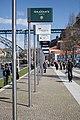 Avenida Diogo Leite (25771231444).jpg