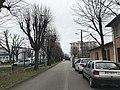 Avenue Branly (Saint-Maurice-de-Beynost) - vue.JPG