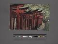 Avenue of wooden torii, Fushimi Shrine, Kyoto (NYPL Hades-2360180-4043979).tiff