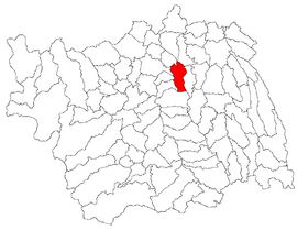 Location in Bacău County