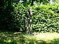 Backofen, Eva-Sinnende 002.jpg