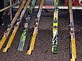 Baiersbronn 2008 jumping skis.JPG